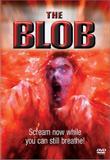 der_blob_front_cover.jpg