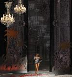 th_10695_Selita_Ebanks_2008_Victorias_Secret_Fashion_Show_Runway_19_122_255lo.jpg